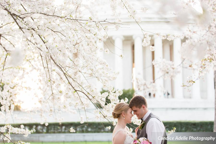 __Candice_Adelle_Photography_CandiceAdellePhotographyVADCMDWeddingPhotographerCherryBlossom236of277_low