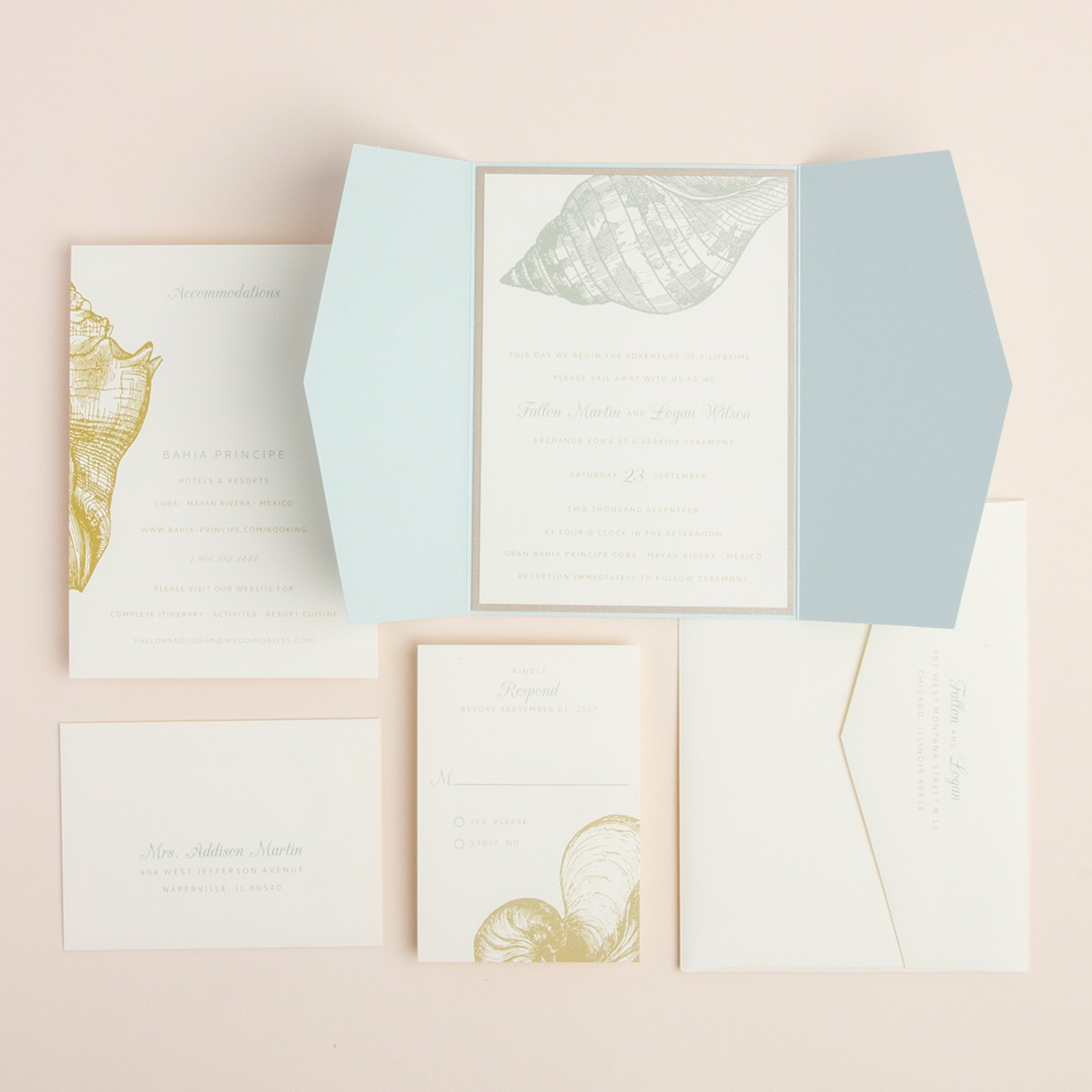 Etched Seashell gatefold wedding invitation by Envelopments offers beautiful shoreline colors, stunning seashell artwork, and a lovely layering.