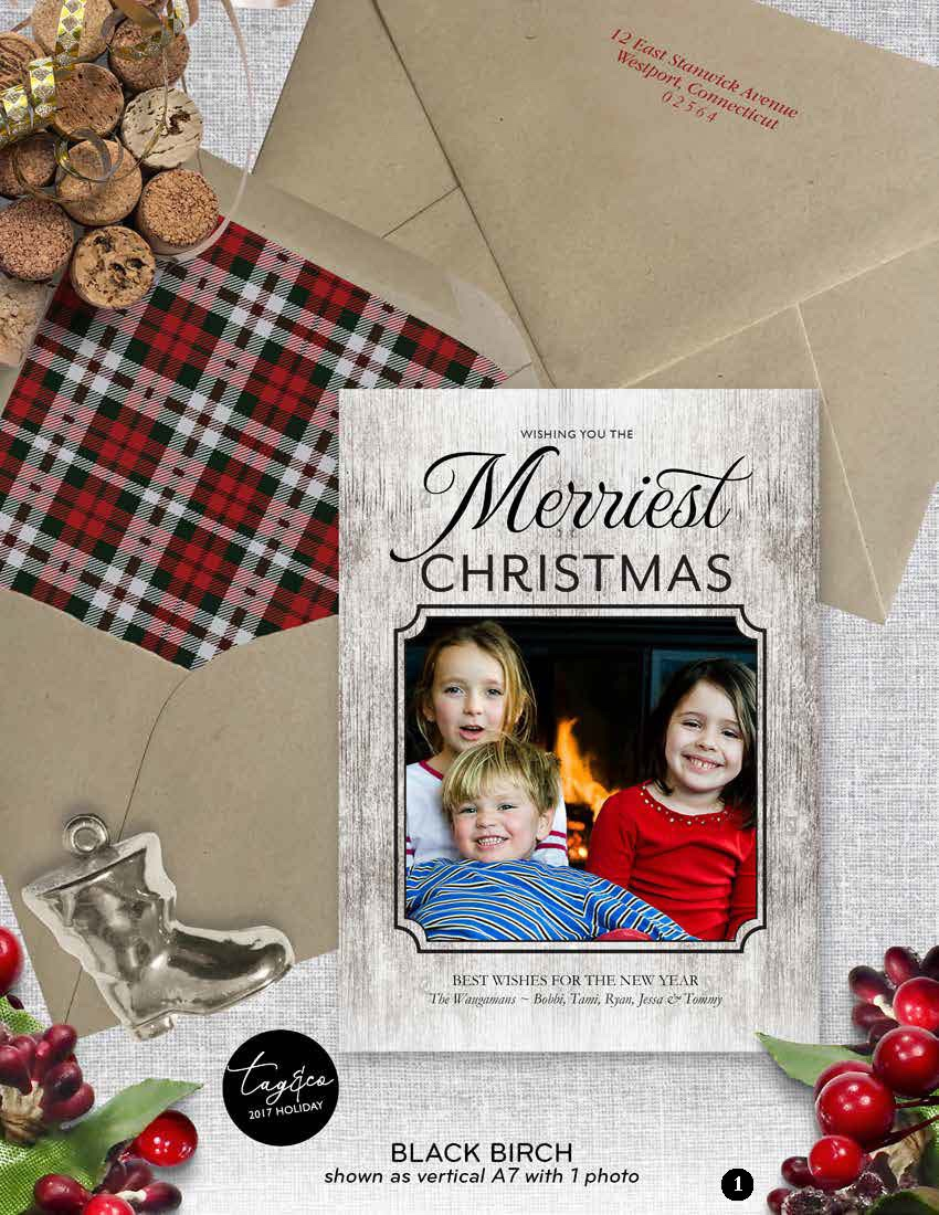 Black Birch Holiday Photo Card from Staccato