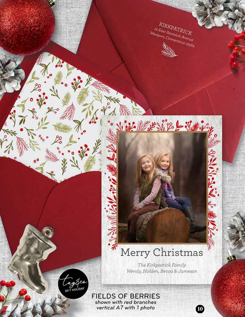 Fields of Berries Holiday Photo Card from Staccato